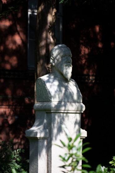 Max Lange: Büste Heinrich Curschmann (Foto: KUNST@SH/Jan Petersen, 2019)