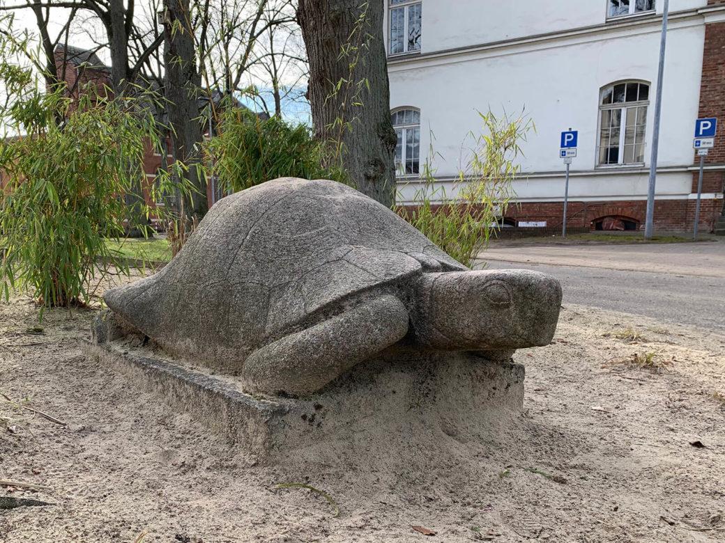 Klaus Kütemeier: Schildkröte (Foto: Hilke Oberländer, 2019)