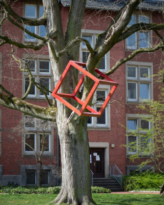 HD Schrader: Cube + Tree (Foto: KUNST@SH/Jan Petersen, 2020)