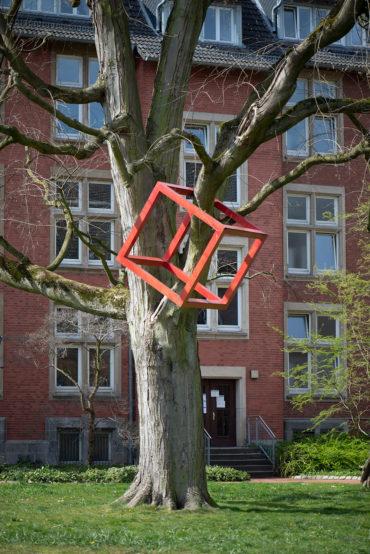 HD Schrader: Cube + Tree (Foto: KUNST@SH/Jan Petersen, 2020)