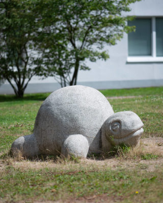 Schildkröte (Foto: KUNST@SH/Jan Petersen, 2020)