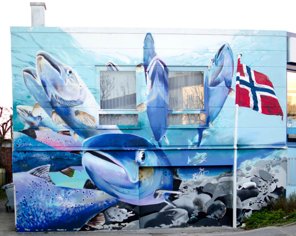 Fische in Norwegen, (Foto: KUNST@SH/Jan Petersen)