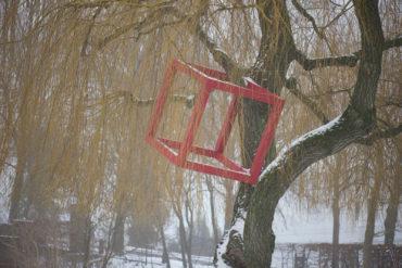 HD Schrader: Cube+Tree (Foto: KUNST@SH/Jan Petersen)
