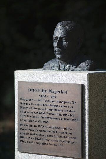 Jörg Plickat: Kieler Nobelpreisträger, (Foto: KUNST@SH/Jan Petersen)