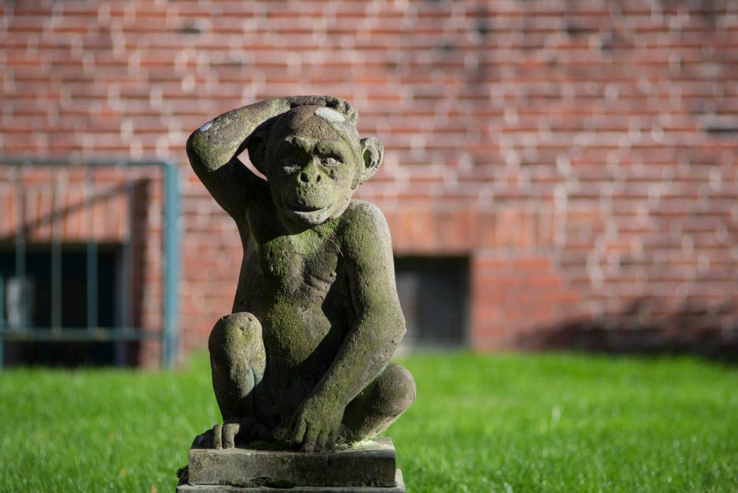 Erich Schmidt-Kabul: Schimpanse, (Foto: KUNST@SH/Jan Petersen)